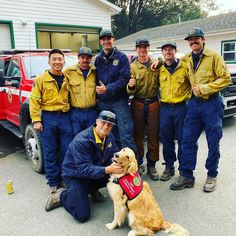 Golden Retriever Therapy Dog Offers Hugs to Firefighters Battling California Wildfires Old Golden Retriever, Feeling Of Loneliness, California Wildfires, Therapy Dogs, Go Fund Me, Northern California, Stress Relief, Health Benefits, Battle