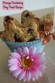 With a Vitamin C boost, these homemade dog treats are a little bit of sunshine in every bite!