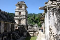 Palenque: Maya City of Temples