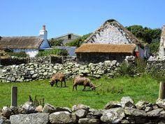 Creagneash (Illa de Man) Amb els bens de 4 banyes...