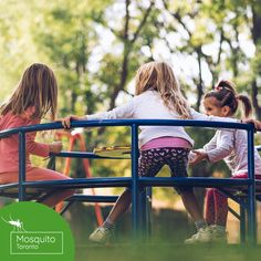 Mosquito Toronto provides all-natural mosquito and tick control services to homeowners in the Greater Toronto area. Tick Control, Pest Control, Weather Seasons, Warm Weather, Summer Hill, Greater Toronto Area, Forest Hill, Swansea, Ticks