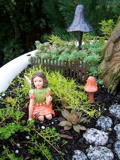 link to fairy gardens-For under the pine tree??