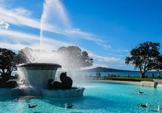 Mission bay fountain , Auckland - was always full of children in summer Mission Bay, The Real World, Auckland, Niagara Falls, South America, New Zealand, Fountain, Scenery, Backyard