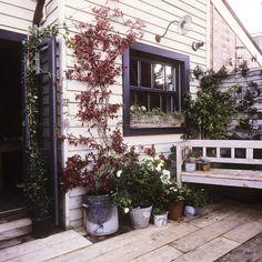 Keltainen talo rannalla: Viisi persoonallista kotia