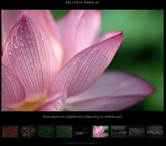 57+ Free image gallery, slideshow and lightbox solutions