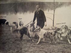 George McCahon with Sunnybank Collies