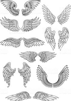 Heraldic bird or angel wings set isolated on white for religious,. Heraldic bird or angel wings set isolated on white for religious,. Heraldic bird or angel wings set royalty-free stock vector art Angel Wings Drawing, Tattoo Angel Wings, Angel Wings Painting, Angel Wings Art, Angel Art, Angel Drawing Easy, Wing Tattoo Designs, Bird Wings, Diy Tattoo