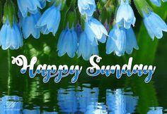 Happy Sunday Friends – Enjoy the Sun Sunday Gif, Sunday Wishes, Sunday Greetings, Sunday Images, Happy Sunday Friends, Good Morning Images, Good Morning Quotes, Sunday Morning, Weekend Quotes