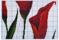 lgg+pdc+triptico+calas+rojas+%288%29.jpg (1600×1088)