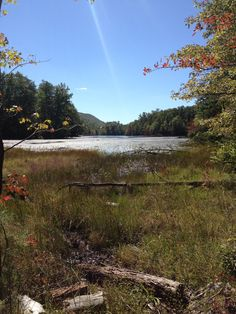 Bays Mountain Kingsport, Tn   Wonderful place to hike and visit with kids.      Kingsport, Tn