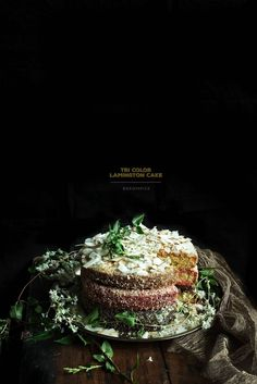 Tri-Color Lamington Cake - Food photography