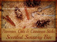 Pinecones, Oats, and Cinnamon Sticks Sensory Bin