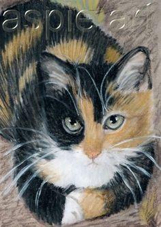 ACEO Original Pastel Drawing Tortoiseshell Cat by Anna Hoff | eBayA