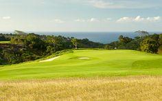 Hole #10 - Prince Course at Princeville Golf Club Visit: www.princeville.com