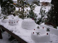Sneeuwtaarten gemaakt vandaag!