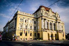 Primaria Municipiului Oradea - Oradea Info