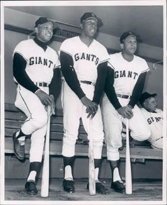 Willie Mays Orlando Cepeda & Willie Mccovey 8 x 10 photo San Francisco Giants - Mint Condition Detroit Tigers Baseball, Baseball Art, Giants Baseball, Baseball Players, Baseball Stuff, Phillies Baseball, Baseball Uniforms, Sports Stars, Sports Pics