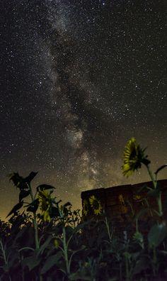 Csillagok fotózása - FOTÓZZ!hu