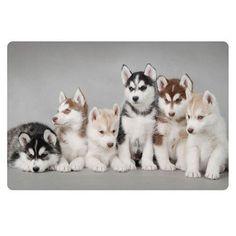 Unique 3D Puppy Carpet Doormats