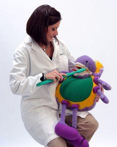 Dentist: Dr. Janna Civils
