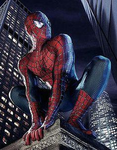 35 Best Spiderman images in 2012   Spiderman, Amazing