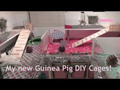 ♥ ♥ ♥ The Guinea Pigs new DIY cages and a little Surprise ;) ♥ ♥ ♥ - YouTube