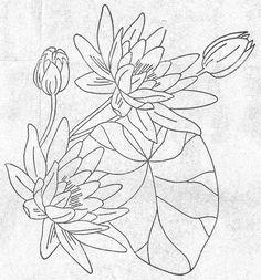 water lily by vintagekitchenkitsch, via Flickr
