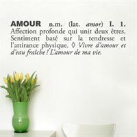 Shop ADzif Blabla Amour Wall Decal (French) at Lowe's Canada. Find our selection of wall decals & stickers at the lowest price guaranteed with price match. Wall Decal Sticker, Wall Stickers, French Walls, Dream Wall, Hand Painting Art, White Vinyl, Vinyl Designs, Wall Quotes, Adhesive Vinyl