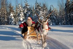Santa Claus,having a reindeer ride in the snowy landscapes of Lapland in Finland.