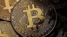 Was habe ich für Erfahrungen in meinem Bitcoin Circuit Selbsttest gemacht?