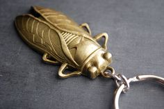 Cicada Keychain Brass Insect Keyring by paperfacestudio on Etsy