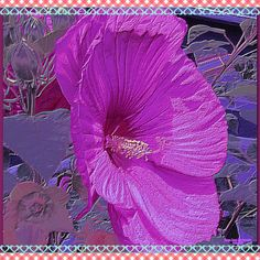 Tanya Lynn Photography Original Art Designs $250.00.Contact Info  tanyalynndowell1950@gmail.com