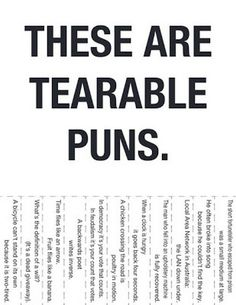Terrible Yet Wonderful Punny Pictures