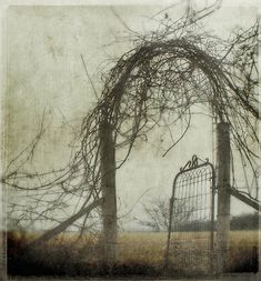 winter's gate,©Jamie Heiden. (The doors are everywhere, once you know to look for them)