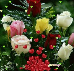 You searched for label/ΕΙΚΟΝΕΣ ΧΩΡΙΣ ΛΟΓΙΑ - Giortazo. Flowers Gif, Seaside Decor, Good Morning Gif, Beautiful Roses, Decoupage, Animation, Plants, Gifs, Microsoft
