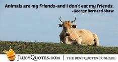 Enjoy these great Animal Quotes. Animals Are My Friends Quote Poem Quotes, Daily Quotes, Best Quotes, Life Quotes, Animal Poems, Animal Quotes, Bernard Shaw, George Bernard, My Friend Quotes