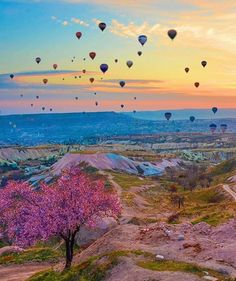 Sunrise in Cappadocia - Turkey Picture and edited by check it out for awesome photo edit! by wonderful_places Napoleon Hill, Air Balloon Rides, Travel Abroad, Great Photos, Twitter, Wonderful Places, Travel Destinations, Scenery, Images