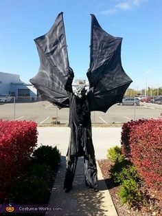Charles: I am wearing the costume. I created it from the movie Jeepers Creepers. I built the wings from aluminum rods, tubes and aluminum angle for the main structure. I had...