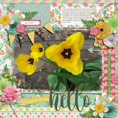 Template: Brook Magee - Singleton 07 - Hipster Kit: Amanda Yi and Amber Shaw - Hello Spring