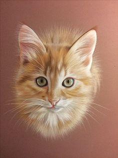 Dessin de chaton réalisé au pastel Pastel Portraits, Pet Portraits, Portrait Art, Painting Fur, Pastel Crayons, Cute Animal Drawings, Cat Drawing, Art Pastel, Pastel Drawing