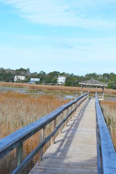 A classic-Pawleys spot just begging for a perfect picnic lunch!