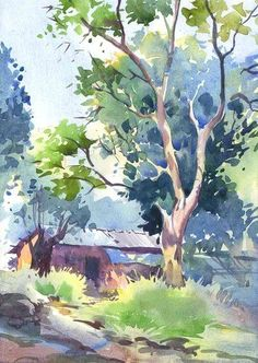 x It is not early morning scene . x It is not early morning scene . ( after 9 am ) …. but light was fresh & climate was little cold too …… I want to catch that freshness Tree Watercolor Painting, Watercolor Sketchbook, Watercolor Projects, Watercolor Landscape Paintings, Landscape Drawings, Easy Watercolor, Watercolor Artists, Watercolor Techniques, Watercolor Illustration