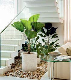 escada-vaso-plantas-jardim-de-inverno Projeto do paisagista Gil Fialho (Foto: Edu Castello/Editora Globo)
