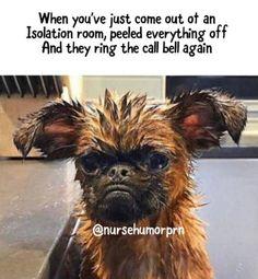 100 Nursing Memes That Will Definitely Make You Laugh - Nursing Meme - Nursing: when you're not sure whether it's Saturday or Tuesday. The post 100 Nursing Memes That Will Definitely Make You Laugh appeared first on Gag Dad. Nurse Jokes, Funny Nurse Quotes, Icu Nurse Humor, Nurses Week Quotes, Dental Jokes, Funny Sayings, Memes Humor, Funny Memes, Ecards Humor