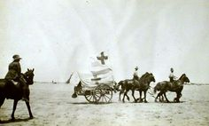 A horse-drawn Australian Red Cross ambulance in the Sinai Desert. Pin by Paolo Marzioli