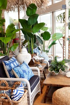 Stunning outdoor living with our collection of outdoor furniture and rugs. We love the tropical feel of this space.