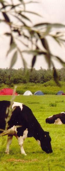 Kamping Farm Biesbosch - Dordrecht (til end October)