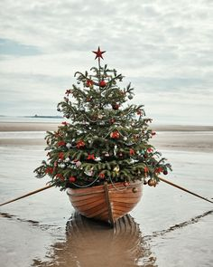 Commence Christmasification via the link in our bio, then tag someone you're going to start getting excited with. Christmas Store, Christmas Mood, Christmas In July, All Things Christmas, Christmas Ornament, Xmas, Nautical Christmas, Colorful Christmas Tree, Vintage Christmas