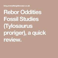 Rebor Oddities Fossil Studies (Tylosaurus proriger), a quick review.