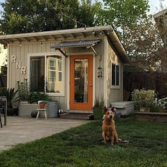 """This is for me! What to do with a half acre backyard? """"She Shed"""" for office, craft room. Might be an open target in an unfenced backyard. And how to get power to it?"""